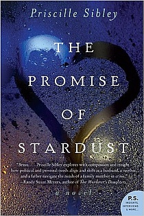 The Promise of Stardust ebook cover