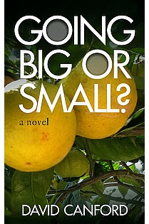Going Big or Small ebook cover