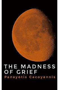 The Madness of Grief ebook cover