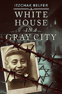 White House in a Gray City ebook cover