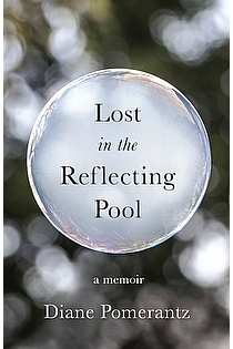 Lost in the Reflecting Pool ebook cover