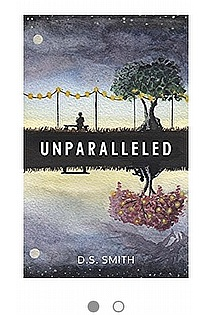 Unparalleled  ebook cover