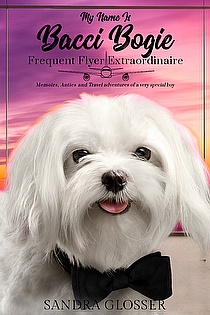 My Name Is Bacci Bogie:Frequent Flyer Extraordinaire ebook cover